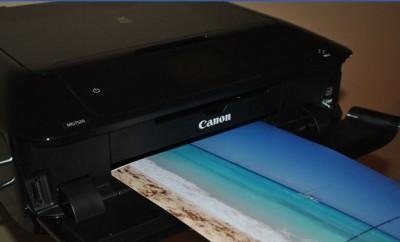 CanonMG7520Herp-712-80.jpg