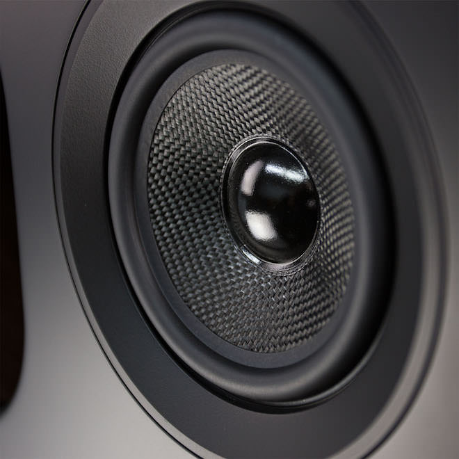 Fluance Fi70 Woofer