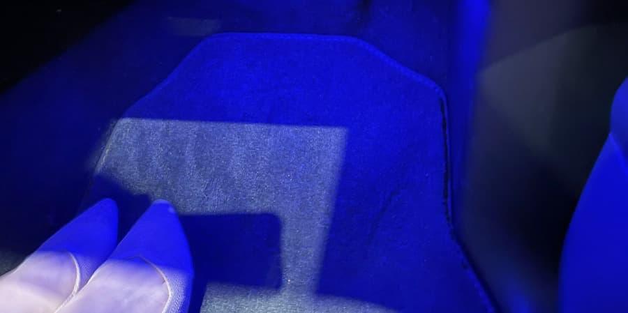 McIntosh blue glow by feet