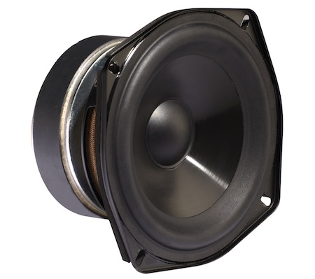 Polk Audio Woodbourne - driver