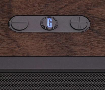 Grain Audio PWS Bluetooth Speaker Top View